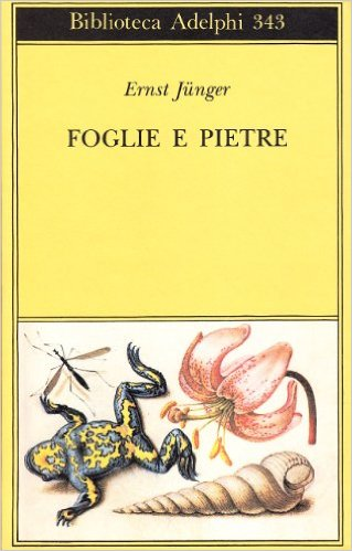 Foglie e pietre Book Cover