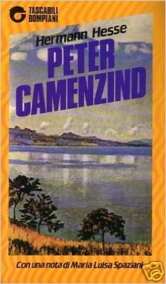 Peter Camenzind Book Cover