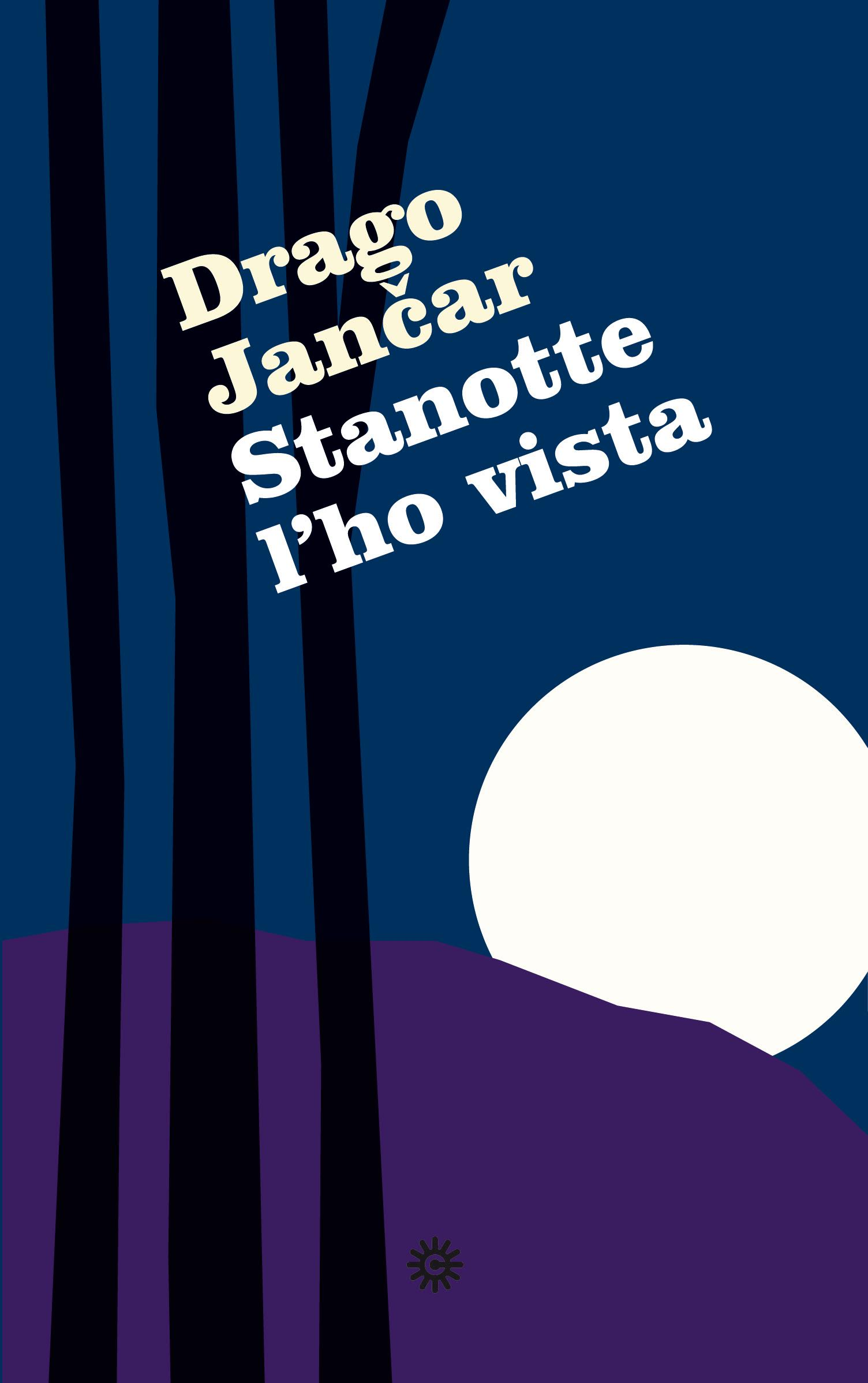 Stanotte l'ho vista Book Cover